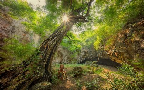 วอลเปเปอร์ : แสงแดด, ต้นไม้, แนวนอน, ถ้ำ, พุ่มไม้, หุบเขา ...