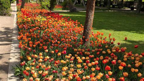 Britzer Garten Events by Farbenpracht Im Britzer Garten B Z Berlin