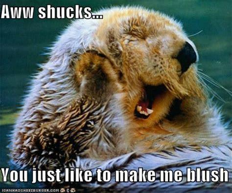 Aww Shucks Meme Aww Shucks You Just Like To Make Me Blush Awwwwww