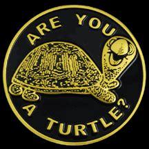turtle car emblems  greek shop