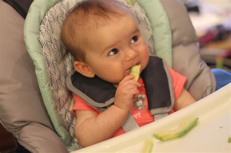 Baby Led Weaning 6 Months Old Meals And Miles
