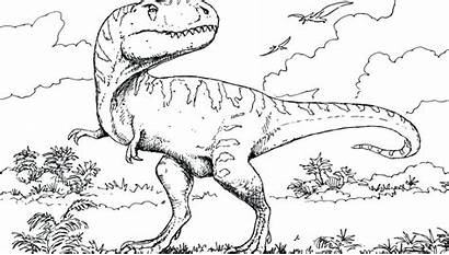 Jurassic Coloring Raptor Pages Velociraptor Dinosaur Park