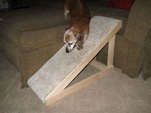 how to build a dog ramp tools and materials With build dog stairs