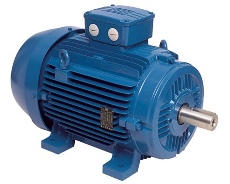 Ac Motor Electric by Alpha Electrics Ac Dc Electric Motors And Spare Parts