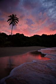 Pink Sunset Kauai Hawaii Beaches