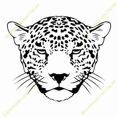 Jaguar Face Clipart Clip Cat Cartoon Animal