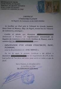 Aide Pour Remplir Certificat D Immatriculation : eregulations niger ~ Gottalentnigeria.com Avis de Voitures