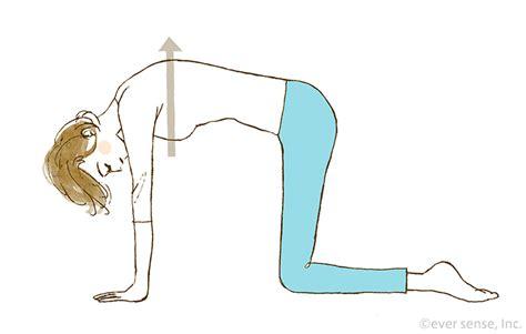 妊娠 後期 股関節