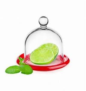 Glasglocke Mit Teller : glashaube glasglocke mit teller 6 varianten zitronenglocke zwiebelglocke glasdom ebay ~ Orissabook.com Haus und Dekorationen