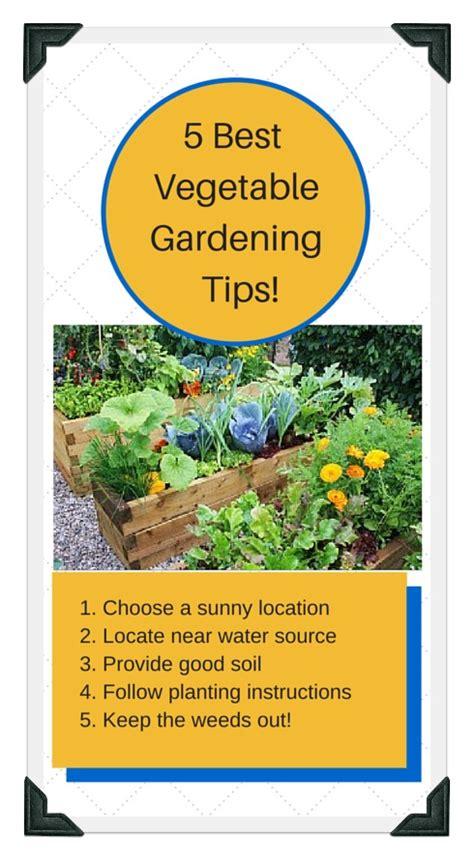 18 Best Speedy Tips Images Raised Bed Vegetable Garden Layout Ideas