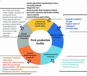 Overview Of Generic Biosecurity Measures On Pig Farm