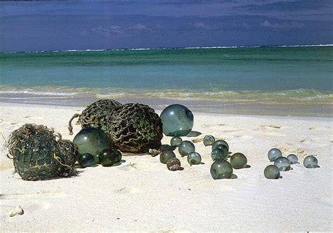 The Poisoned Paradise Island
