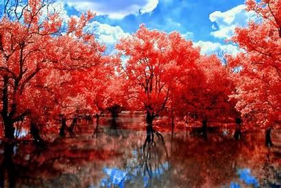 Fall Nature Landscape Desktop Backgrounds Wallpapers Background
