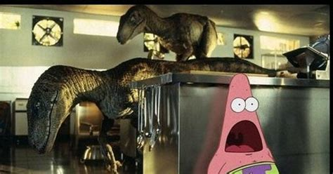 surprised patrick   funny situations  pics