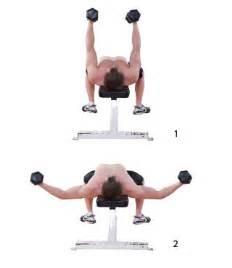 Schouder fitness oefeningen