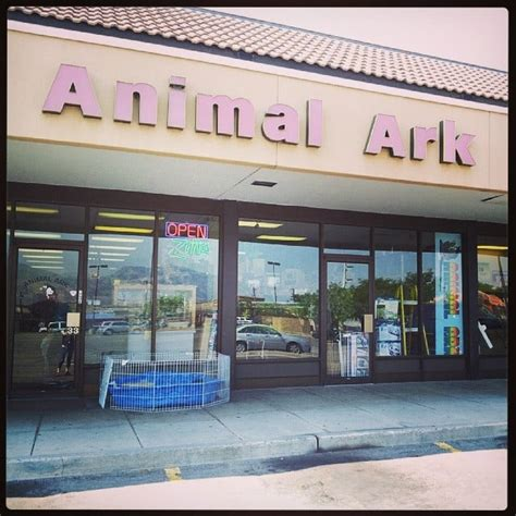animal ark pet stores   pet stores