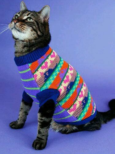 cats  jumpers  hoodies  tops