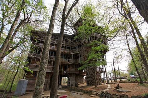 Top Spectacular Tree Houses In The World-amazing