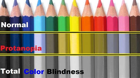 what colors do colorblind see this is how colorblind see the world