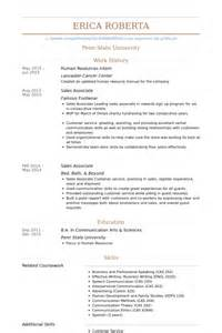 dazzling ideas sle human resources resume resume sle
