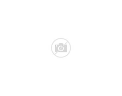 Fish Certificate Fishing Award Gf