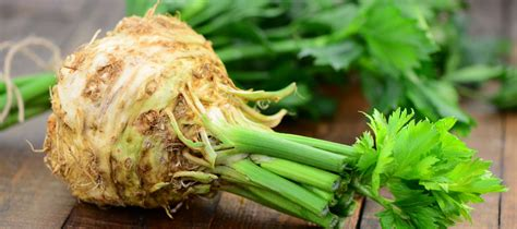 comment cuisiner le celeri branche les recettes avec du céleri