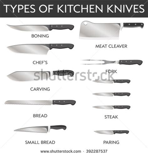 names of knives in the kitchen blade steak stock vectors vector clip