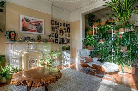 Images Of Living Room Plants by 10 Excellent Ideas To Display Living Room Indoor Plants