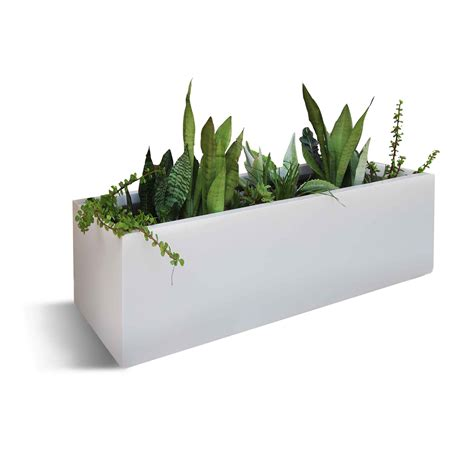 bonayoncom plant pot rental  regular service