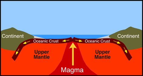 Where Does Seafloor Spreading Take Place Brainly by Mrb Science Plate Tectonics