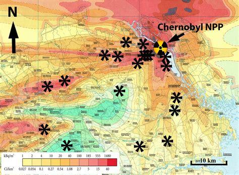 Радиация и животные в Чернобыле. Какие последствия аварии на ЧАЭС сегодня для природы? . Чернобыль . Яндекс Дзен