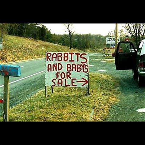 funny yard signs   effective  samples