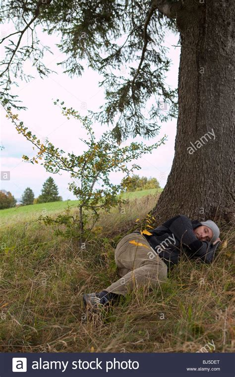 man sleeping   tree stock photo alamy