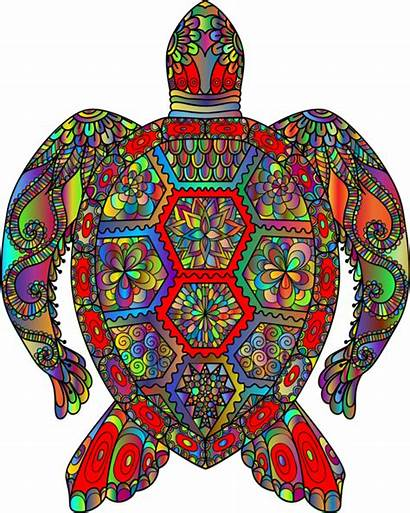 Turtle Sea Drawing Transparent Watercolor Clipart Clipartmag