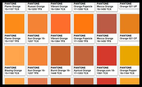 longhorn pantone orange paint pictures to pin on