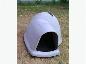Large igloo dog house for sale south nanaimo parksville for Large dog igloo petsmart