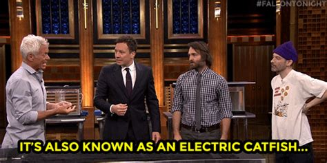 Will Forte Comedy Gif  Find & Share On Giphy