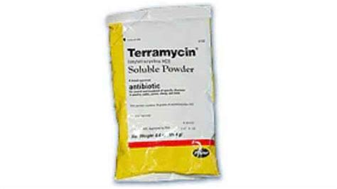 terramycin for cats oxytetracycline hcl treating bacterial infections in