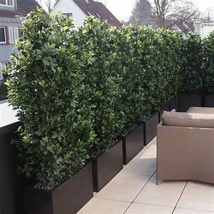 Wetterfeste Kunstpflanzen Balkon : bella plana ilex hecke ~ Michelbontemps.com Haus und Dekorationen