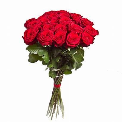 Bouquet Rose Flowers Transparent Flower Purepng