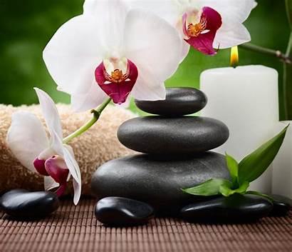 Massage Bing Thai Lucy Zen Orchid Chocolate