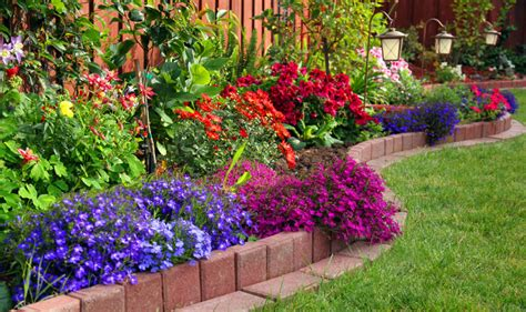 how to make your garden more how to make your garden more appealing living in this season