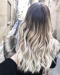 Tie And Dye Blond Cendré : carr blond cendr chaton chien donner ~ Melissatoandfro.com Idées de Décoration