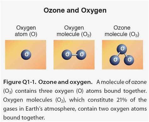 why is ozone an important form of oxygen ozone layer and cfcs 171 kaiserscience