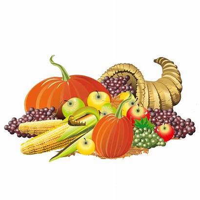 Cornucopia Clipart Thanksgiving Transparent Background Vegetarian Colorful
