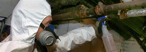 asbestos  mold services corp nj pa ny  md