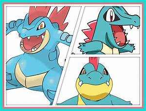 My Top 10 Favourite Starter Pokemon Anime Amino