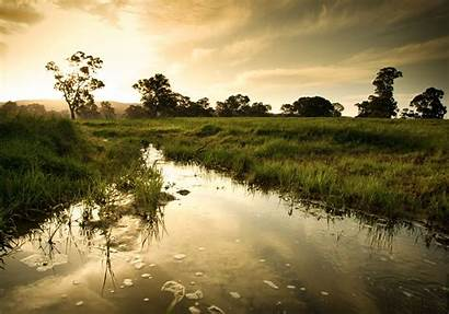 Wetlands Florida Camping Days Places Giornata Umide