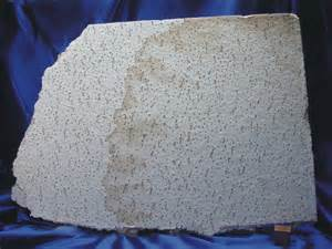 asbestos ceiling tile panel many requests have been