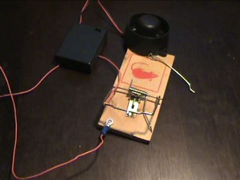 Homemade Mouse Rat Trap